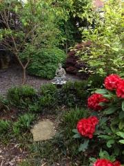 <h5>Front Garden detail</h5><p>June 2016</p>