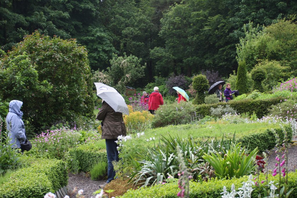 A spot of rain doesn't deter hardy planters