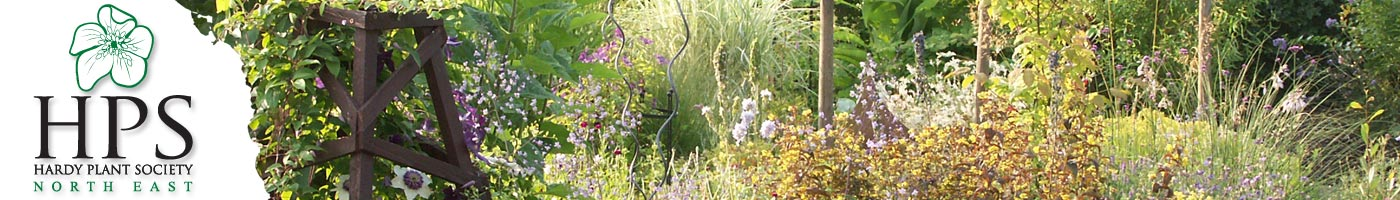 Hardy Plant Society North East