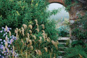 Wall Garden at Great Dixter