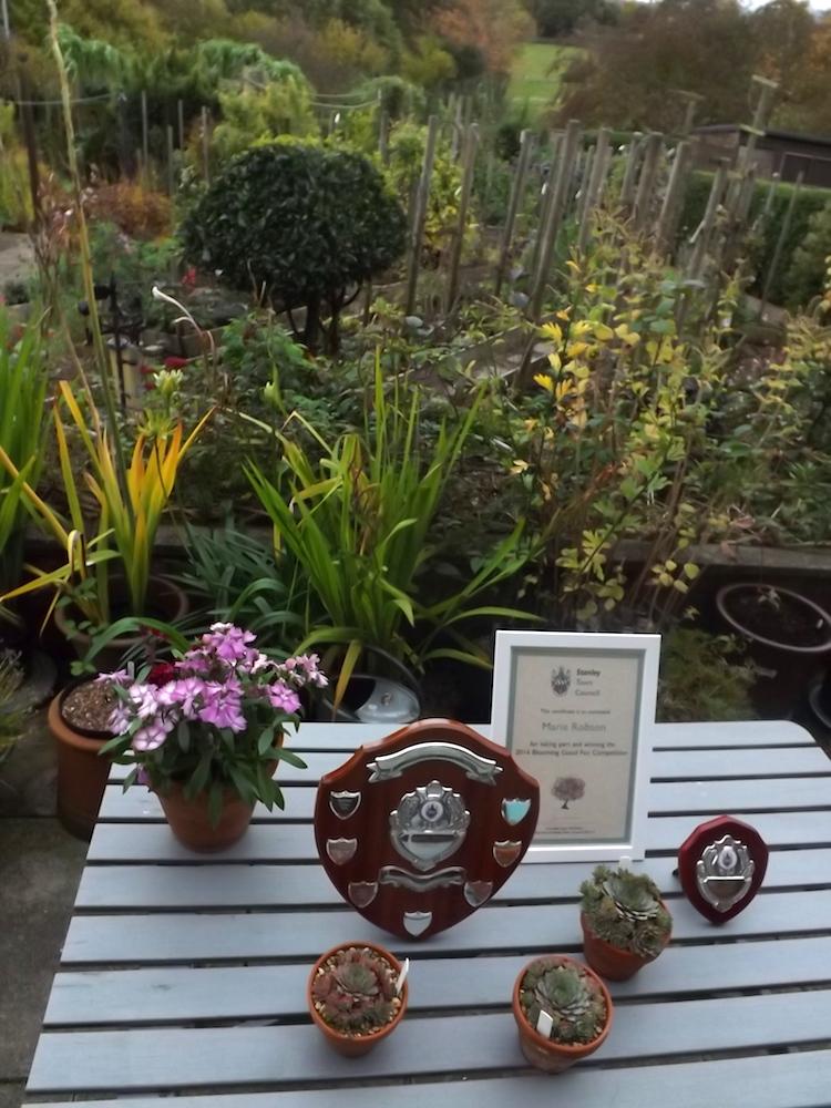 161027-4096-awards